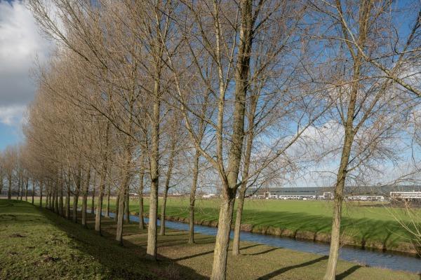 Geniedijk Rijsenhout, Unesco Werelderfgoed / bedrijventerrein uit: Groot-Amsterdam (2020) © Theo Baart