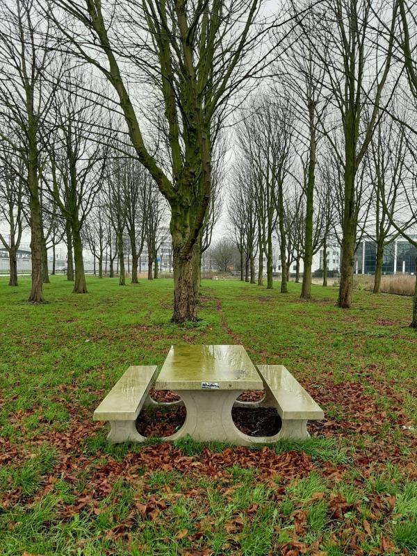 Stadspark Hoofddorp